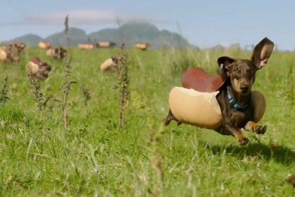 Super Bowl 50 Ads Round-Up