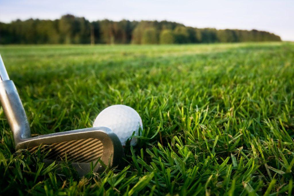 Golfers Database